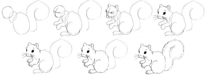 Как нарисовать белку из сказки о Царе Салтане поэтапно - рисунки (3)