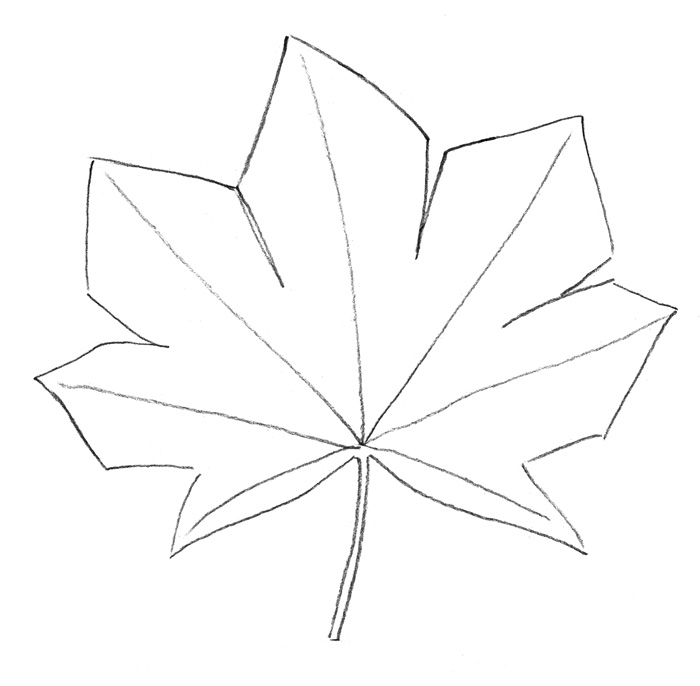 Как поэтапно нарисовать осенний лист карандашом для начинающих - рисунки (18)
