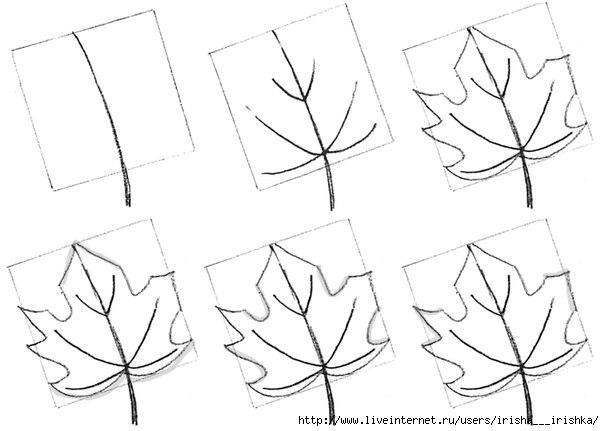 Как поэтапно нарисовать осенний лист карандашом для начинающих - рисунки (21)