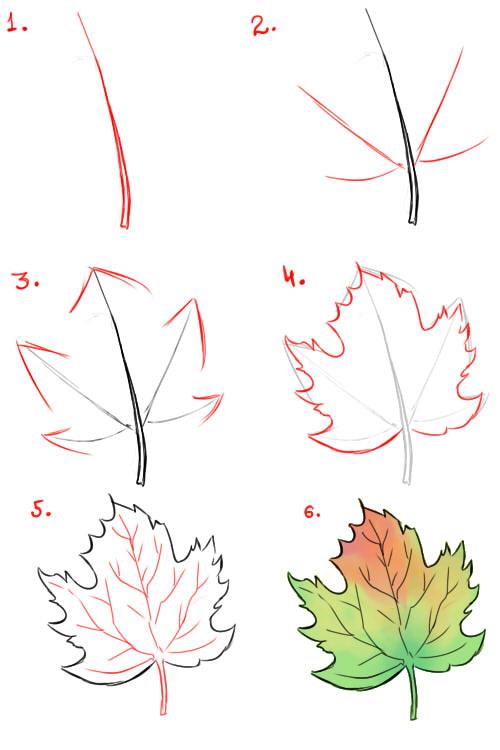 Как поэтапно нарисовать осенний лист карандашом для начинающих - рисунки (25)