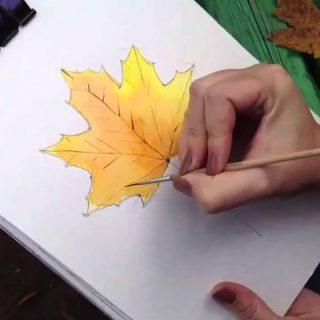 Как поэтапно нарисовать осенний лист карандашом для начинающих   рисунки (26)