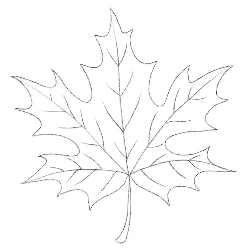Как поэтапно нарисовать осенний лист карандашом для начинающих - рисунки (27)