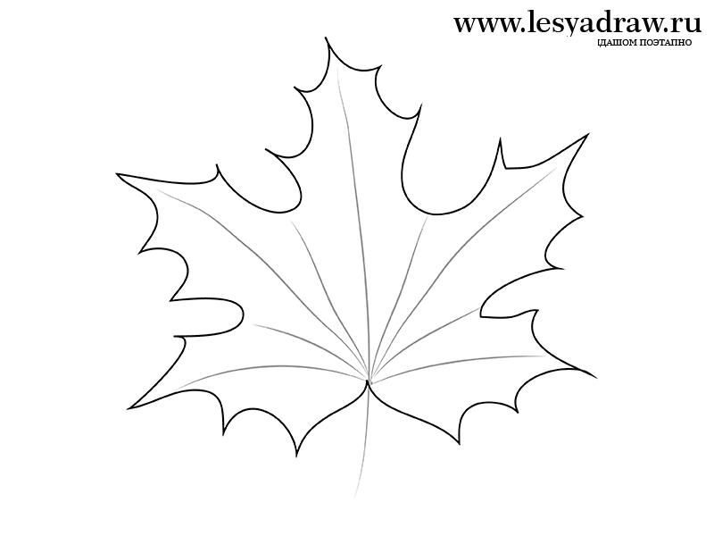 Как поэтапно нарисовать осенний лист карандашом для начинающих - рисунки (6)