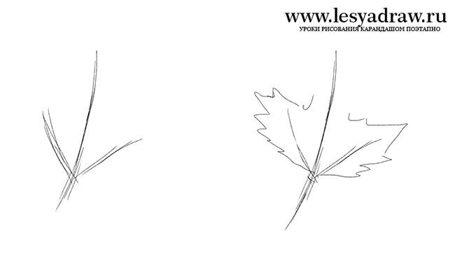 Как поэтапно нарисовать осенний лист карандашом для начинающих - рисунки (7)