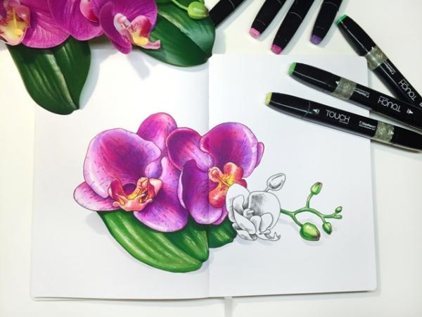 Картинки для срисовки маркерами - лучшая сборка (26)