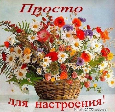 Картинки доброе утро Оксана - открытки (10)