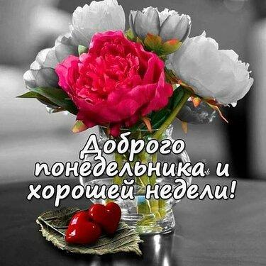 Картинки доброе утро Оксана - открытки (4)