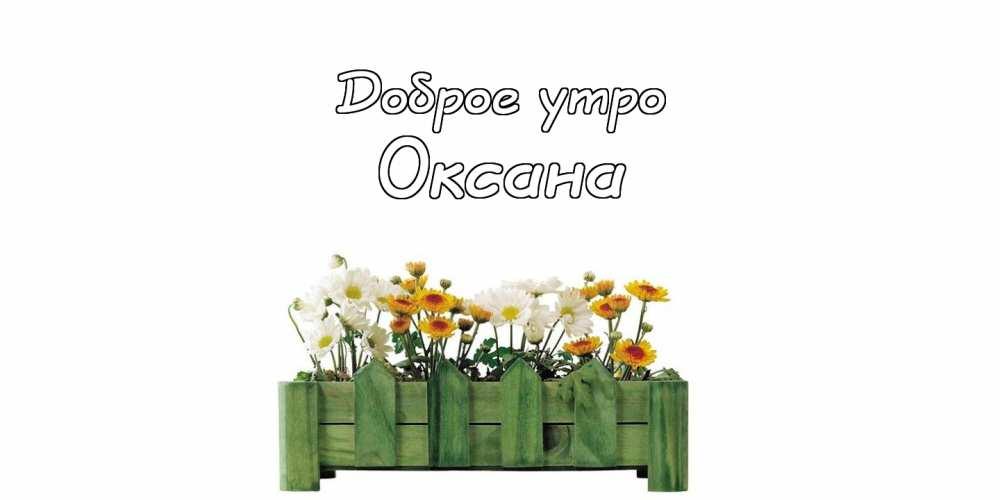 Картинки доброе утро Оксана - открытки (7)