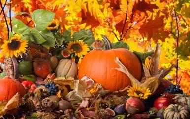 Картинки осень сентябрь, октябрь и ноябрь для детей (17)