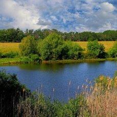 Картинки природа донского края (19)