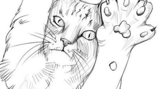 Картинки срисовать рисунки карандашом в блокнот   подборка (2)
