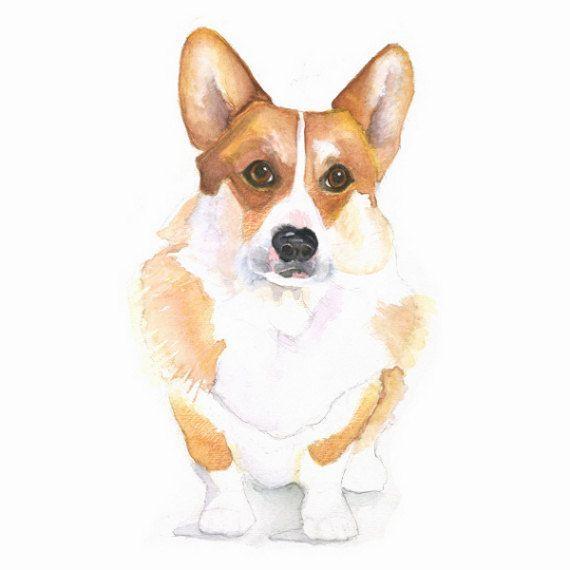 Красивые картинки про собак карандашом (16)