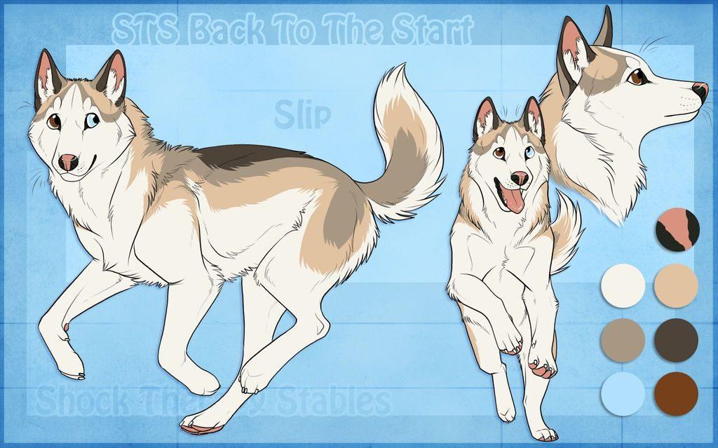 Красивые картинки про собак карандашом (20)