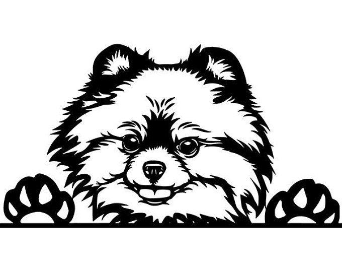 Красивые картинки про собак карандашом (9)
