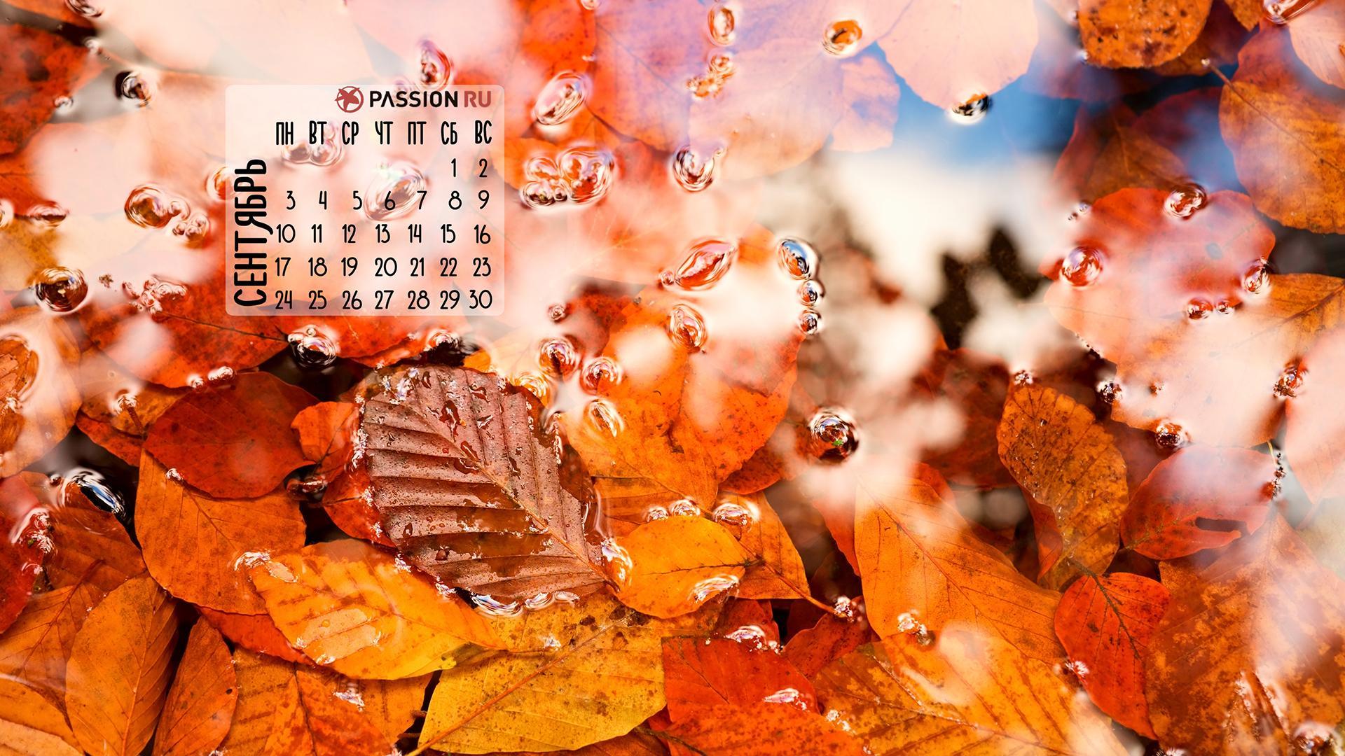 Красивые картинки сентябрь на рабочий стол (7)