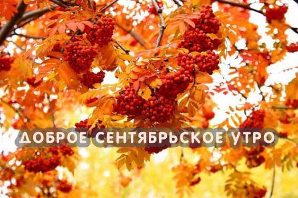 Красивые открытки с добрым сентябрьским утром (5)