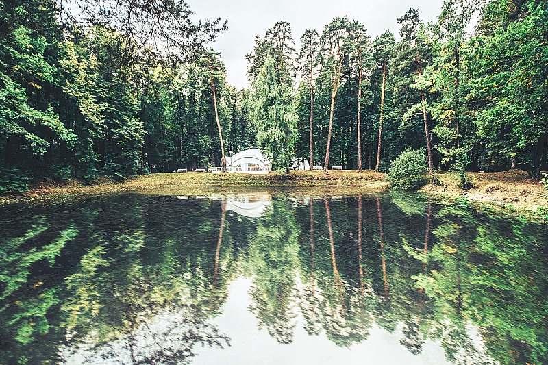 Лес в сентябре фото подборка (1)