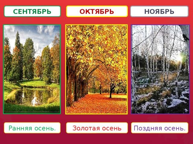 Осень сентябрь картинки для детей - подборка (17)