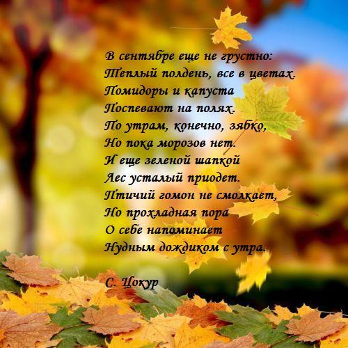 Осень сентябрь картинки для детей - подборка (9)