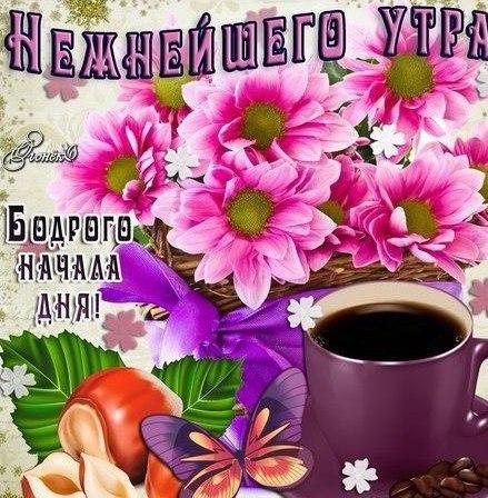 Открытки с добрым утром для жены любимой (4)