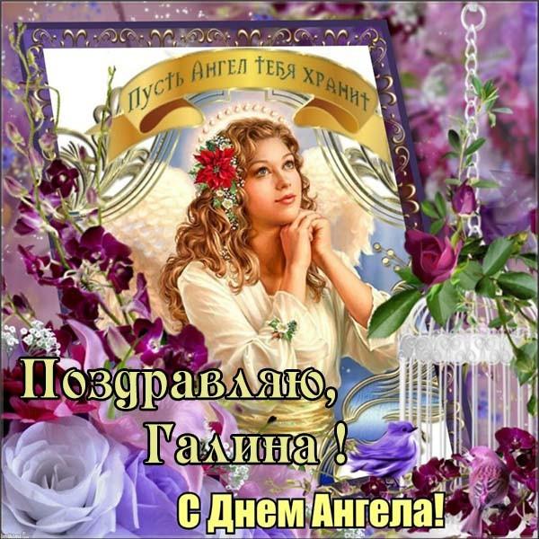 Прикольные картинки на именины Игнатия с днём ангела (12)