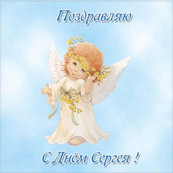 Прикольные картинки на именины Сергея с днём ангела (3)