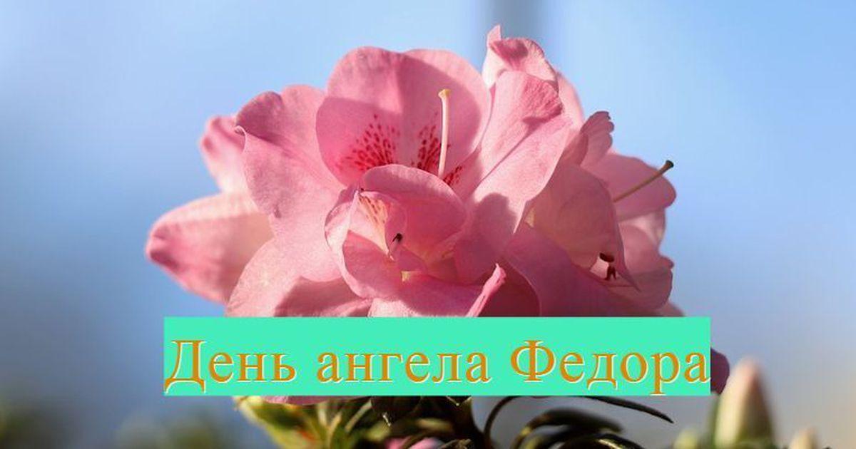 Прикольные картинки на именины Федора с днём ангела (3)
