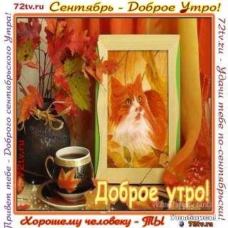 Прикольные картинки с добрым утром сентябрь (7)