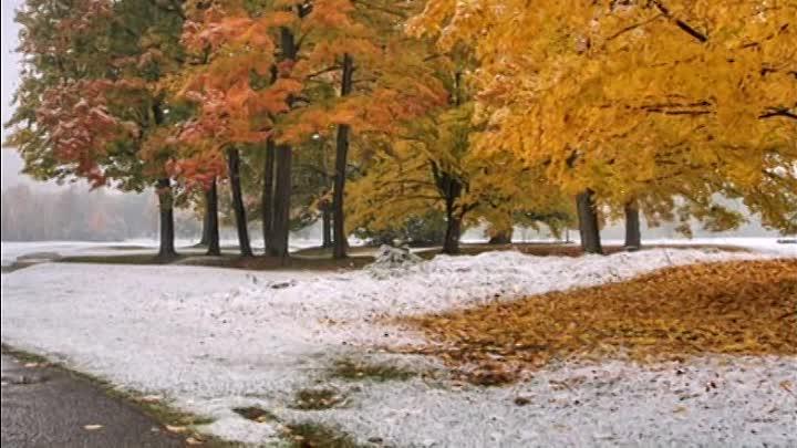 Снег в сентябре картинки прикольные (12)