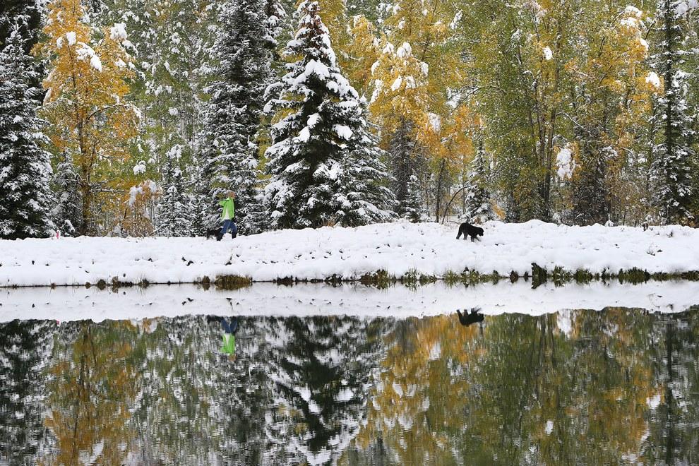 Снег в сентябре картинки прикольные (16)