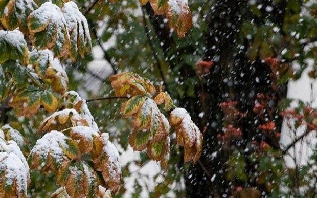 Снег в сентябре картинки прикольные (6)