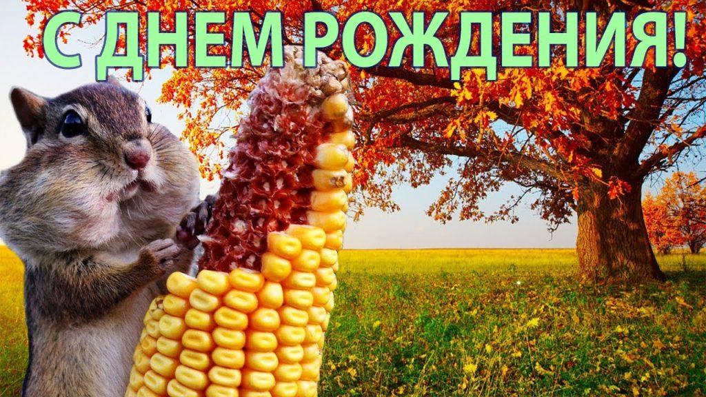 Февраля открытки, открытка именинникам сентября