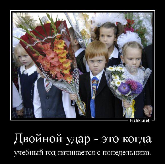 С 1 сентября смешные фото и картинки (18)