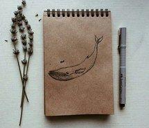 Тумблер картинки для срисовки кит - подборка (10)
