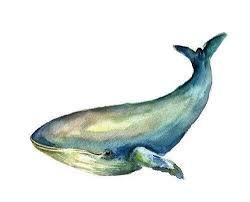Тумблер картинки для срисовки кит - подборка (11)