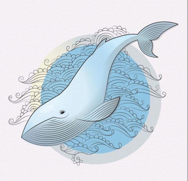 Тумблер картинки для срисовки кит - подборка (19)