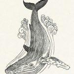 Тумблер картинки для срисовки кит — подборка