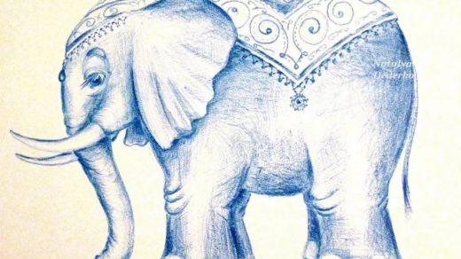 Удивительные картинки со слоном рисованные (32)