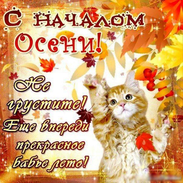 открытки поздравления с первым днем осени (1)
