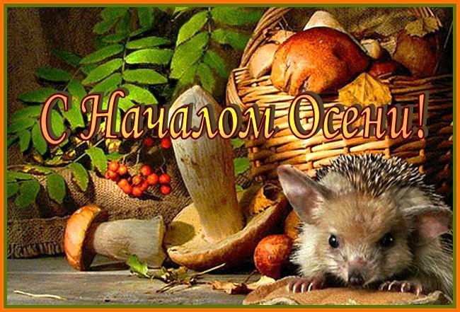 открытки поздравления с первым днем осени (12)