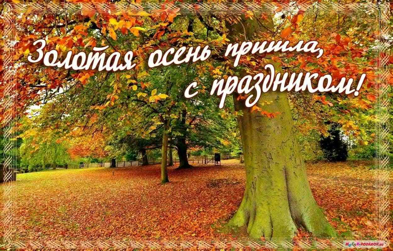 красивые картинки октября с пожеланиями экране могут отличаться