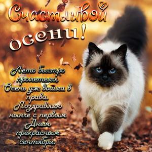 открытки поздравления с первым днем осени (7)