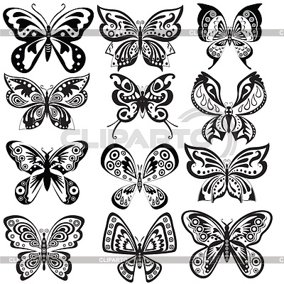 Бабочка чб рисунок и картинки красивые005