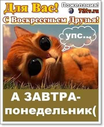 Вечер воскресенья прикольные картинки004