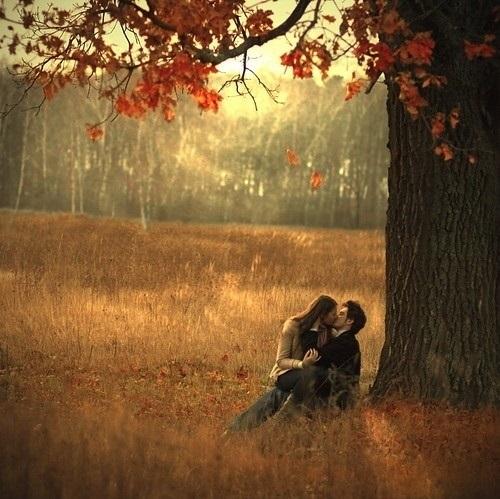 Влюбленные в лесу красивые фотографии018