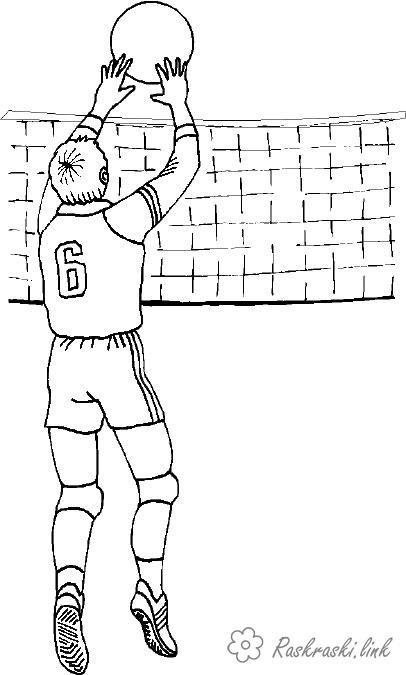 Волейбол нарисованные картинки021