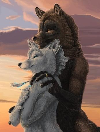 Волчица девушка арт014