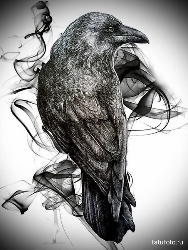 Ворона рисунок тату и эскизы002