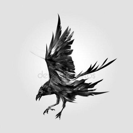 Ворона рисунок тату и эскизы004