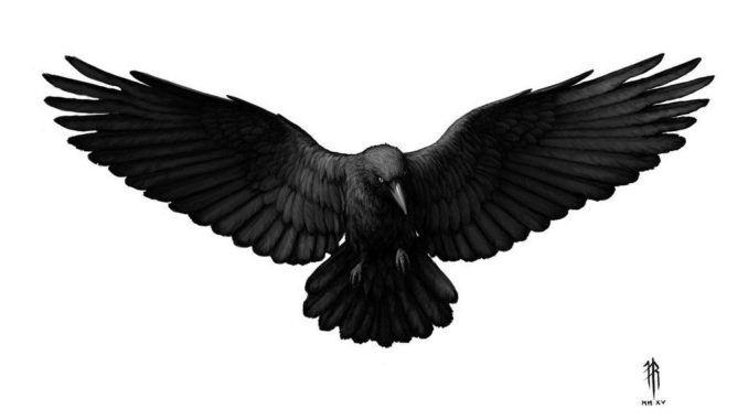 Ворона рисунок тату и эскизы005